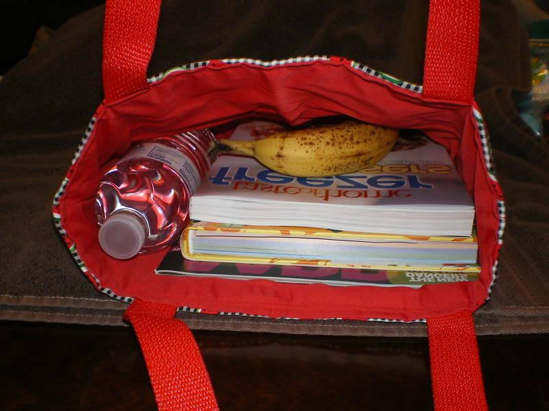 Mary Mary's Book Lunch Purse